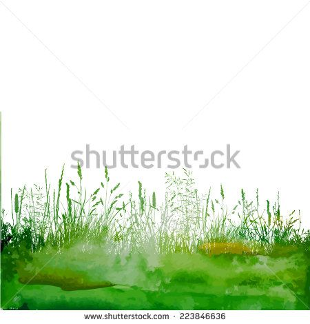 Watercolor green background with grass. Vector - stock vector