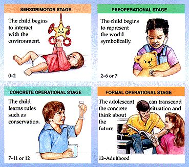 Another table of PIaget's Theory that is simple to read and a good reminder for when we need to determine what stage a patient might be in. Piaget's Theory about Stages of Cognitive Development