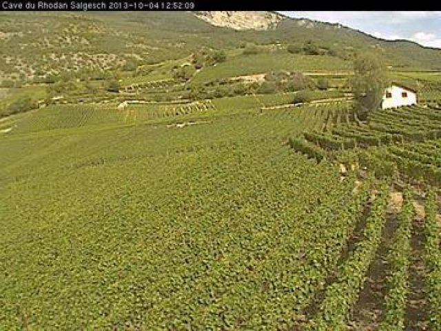 Live camera Salgesch Salgesch, Switzerland.