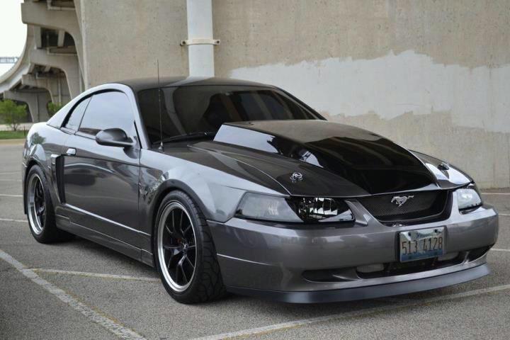Mario Pineda's Dark Shadow Gray 2003 Mustang GT