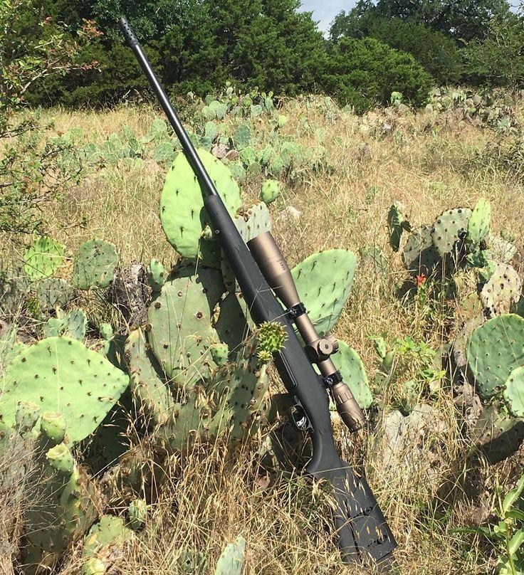 The hunting rig @matthewcosenzo used on his last Texas hog hunt.⠀ -⠀ >>> Story at SHWAT.com <<<⠀ -⠀ @savagearms Long Range Hunter #300winmag⠀ @bushnell_official LRTS 4.5-18x 44mm⠀ @federalpremium EDGE TLR⠀ -⠀ #Texas #SHWATlife ⠀ #tacticalhunter #hunt #hunter #organic #meateater #hoghunting #wildboar #hunter #hunting #wildhogs http://misstagram.com/ipost/1543970876301597621/?code=BVtSVTpgVu1