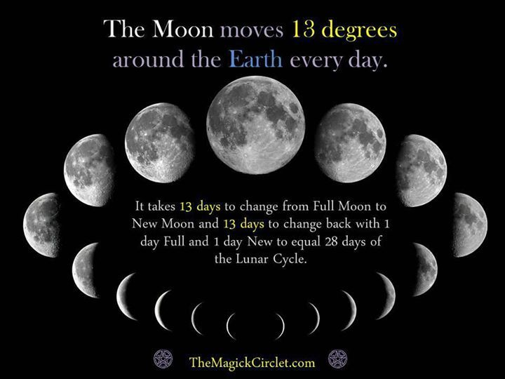 Image result for 13 moons cycles