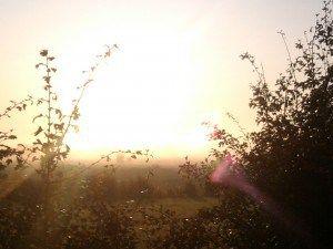 Dag 528 – De invloed van helder (ochtend)licht en lange afstandlopen