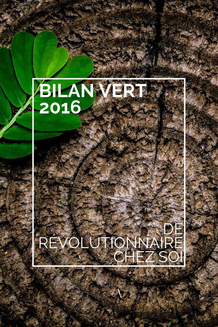 Ariane, fondatrice du blog Révolutionnaire chez soi, examine les gestes verts qu'elle a posés en 2016 et présente de nouvelles pistes écologiques pour 2017.