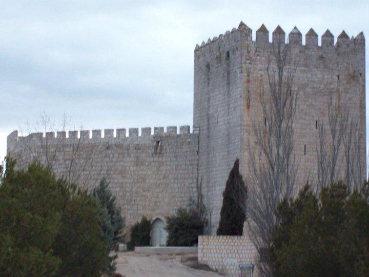 Castillo de Monzón de Palos.