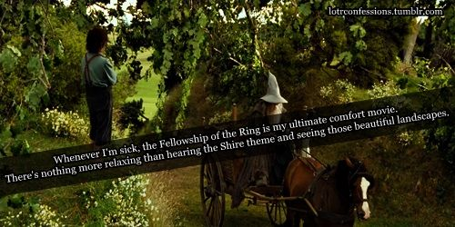 This is so true! When I'm sick, FotR is my go-to movie. When the Shire music starts playing I feel better.....