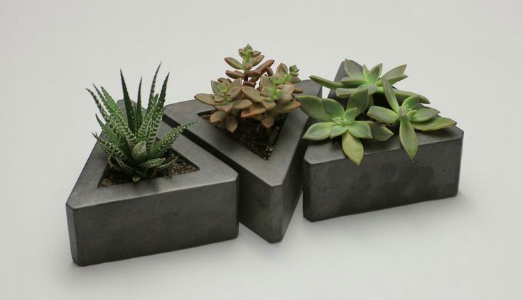 Set of 3 Triangular Concrete Modular Succulent Planters by Rough Fusion on Etsy