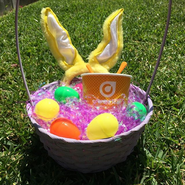 216 best easter froyo pics images on pinterest easter photos of give the gift of froyo this easter littles ones teens and adults negle Image collections