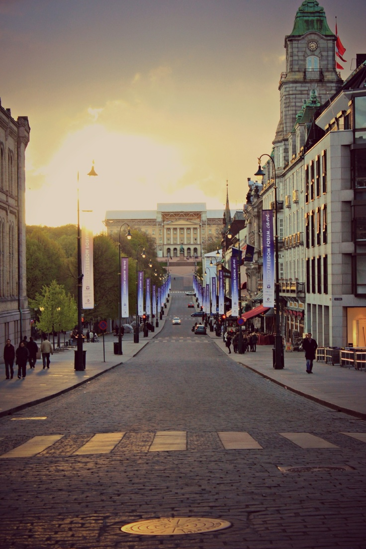 Royal Palace - Oslo, Norway.  I believe this is the view straight down Karl Johanns Gate.