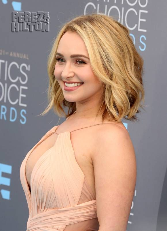 hayden panettiere - Yahoo Image Search Results