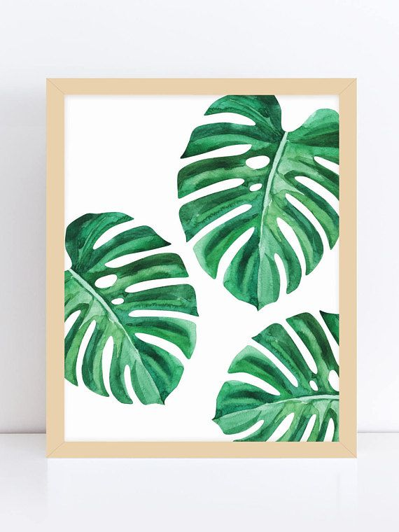 Monstera Monstera Leaf Art Tropical Decor Print Tropical Etsy Leaf Art Tropical Wall Art Painted Leaves Download transparent tropical leaves png for free on pngkey.com. monstera monstera leaf art tropical