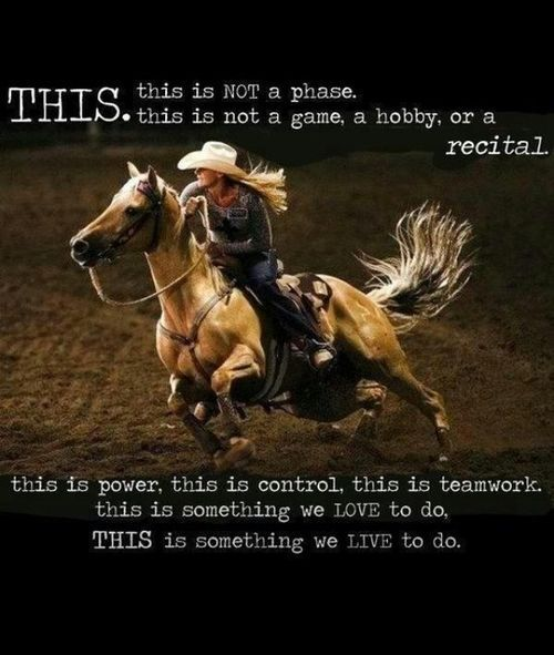 Barrel Racing Quotes | rodeo cowgirl barrel racing horse | still my favorite barrel racing quote <3