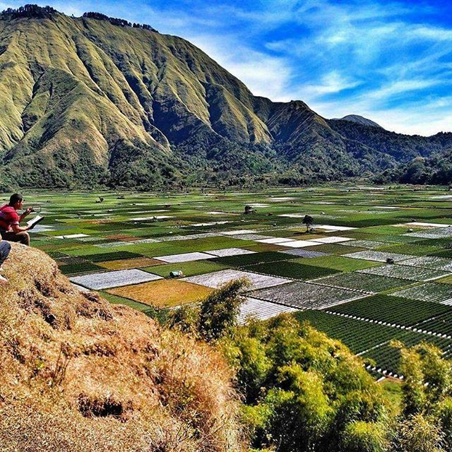 Selong Hill View point - The best place to Visit  Located:  Sembalun Village.  #selonghill #sembalunvalley #sembalunvillage #eastlombok #lombokisland #lombok #indonesia #hiking #backpaker #mountaineering #tourlombok #mtrinjani #volcanoindonesia