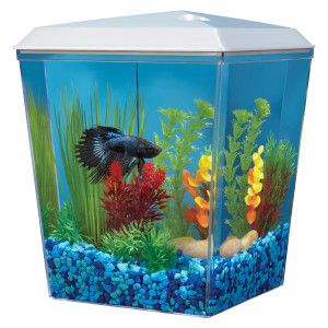 Top fin bettascene 1 aquarium petsmart starting with for Betta fish tanks for sale
