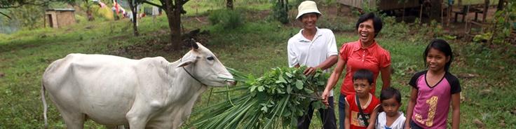 Heifer International - giving real hope