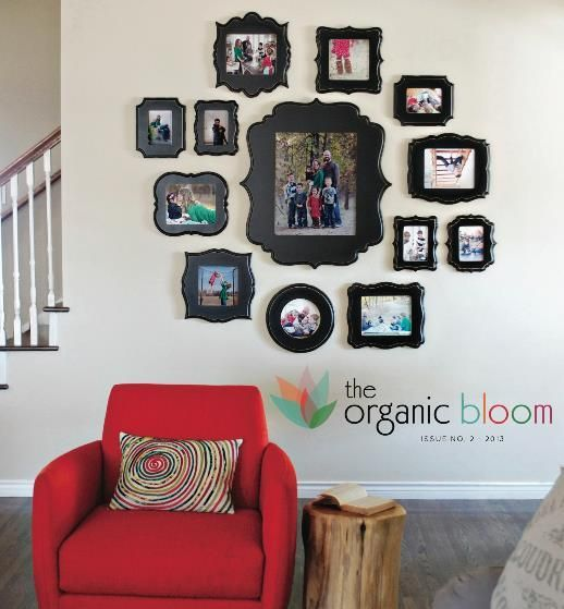 cute wall display organic bloom with picture frame displays on walls