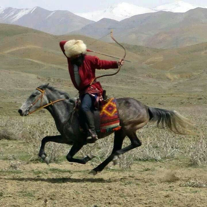 Horseback archer. Standard Turkic warrior - shooting from behind his head: ain't no thing.