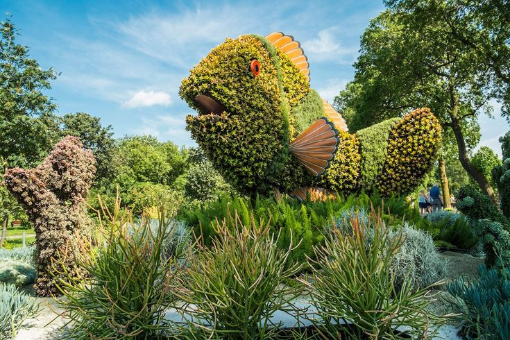 In the botanical garden of Montreal opened the largest international exhibition of sculptures in the garden of plants Mosaicultures Internationales de Montreal in 2013.
