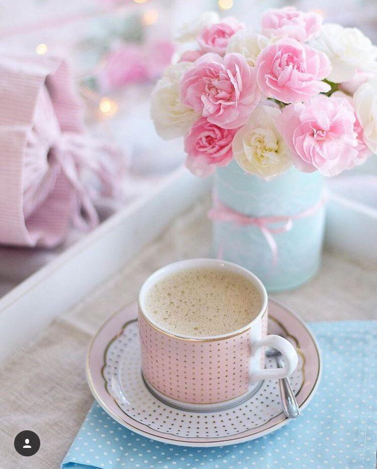 фото нежные милые цветы список достопримечательностей пхукета