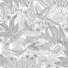 Resultado De Imagen Millie Marottas Tropical Wonderland Colouring Book Adventure