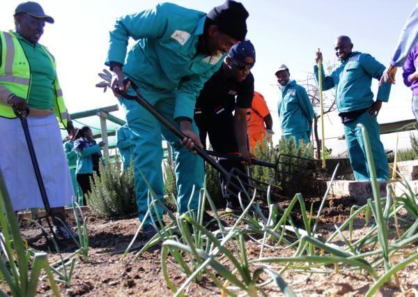 Madonsela joins LeadSA for Madiba - Gauteng | IOL News | IOL.co.za