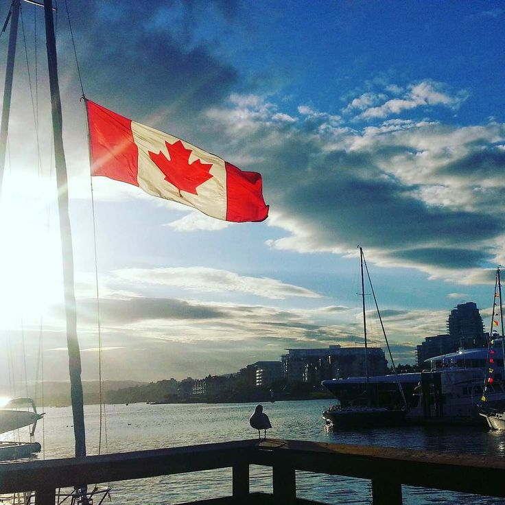 """""""The true north strong and free!"""" So lucky to live in this beautiful country.  #happycanadaday #victoriabc"""