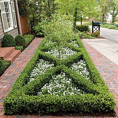 Front Yard Boxwood Parterre Boxwoods for Every Landscape
