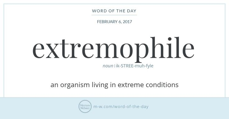No, an extremophile is not an enthusiast of extreme sports (though -phile. Rather, extremophiles are organisms—mostly microorganisms—that thrive in environments once considered uninhabitable, from