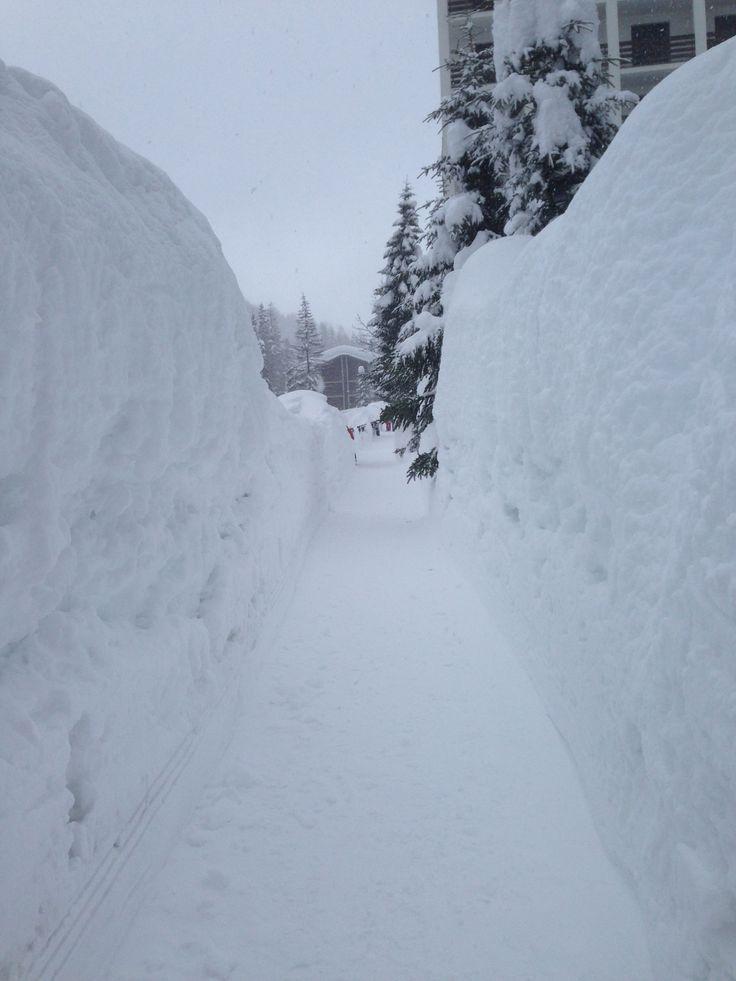 Huge amount of snow