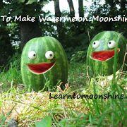 How to Make Watermelon Moonshine