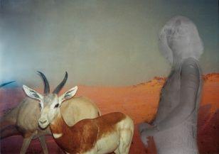 Dana with antelopes, collage, 60 x 40 cm, 2005