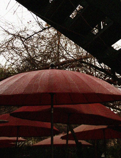 Umbrellas, The Hub, Bathurst NSW Australia