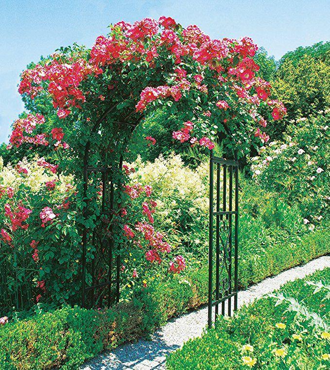1126 best Garten Ideen Deko & Co images on Pinterest   Arch, Belt ...