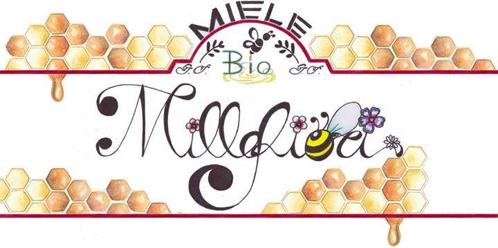 Etichetta Miele Bio Millefiori (china e pastello digitalizzato)