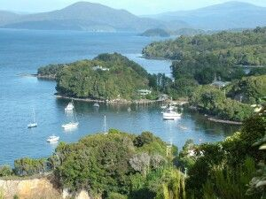 Stewart Island, New Zealand. . . The 3rd largest island in New Zealand, and a place of beauty!