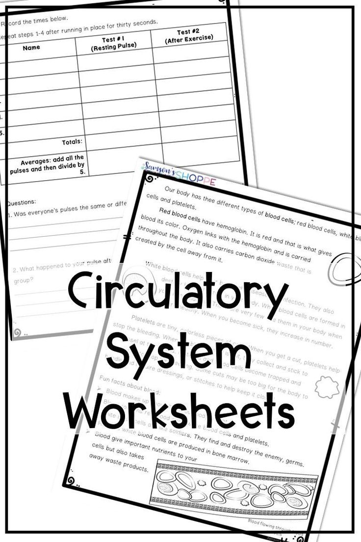 4 Worksheets for 4 Year Olds Preschool Reading Worskheets ...
