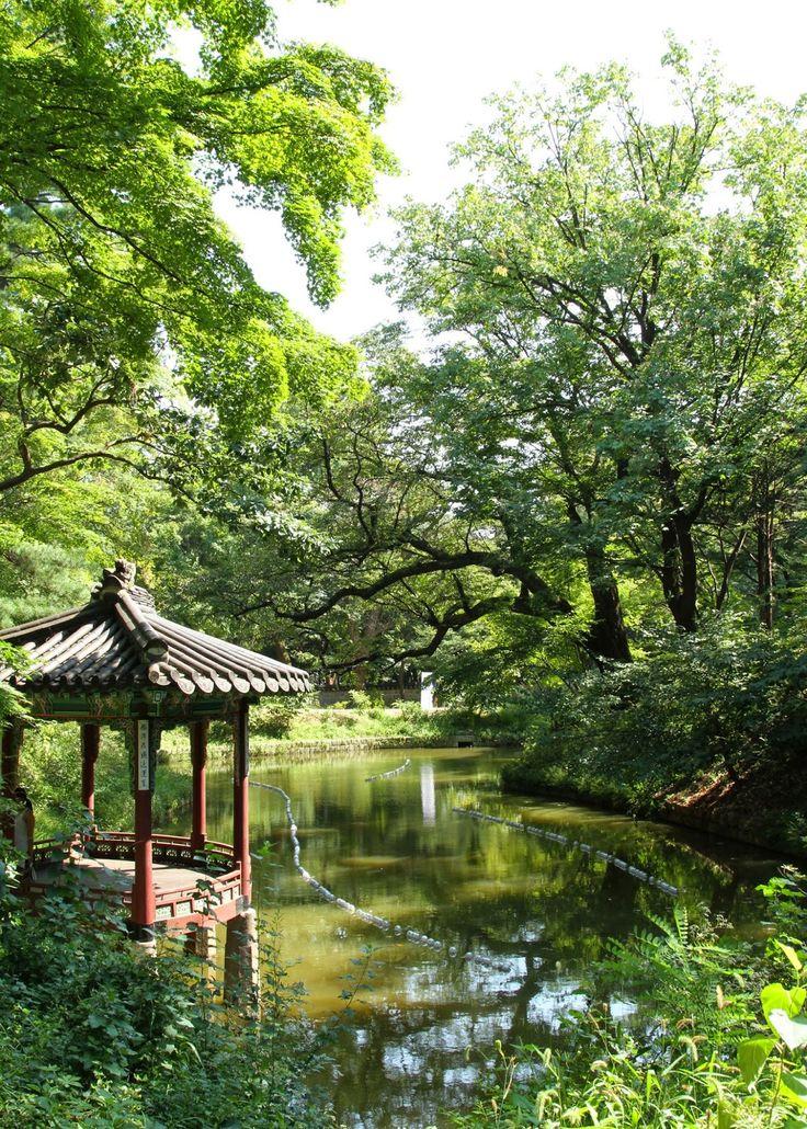 Changdeokgung Palace, Seoul, South Korea   Photo by me!<<beautiful