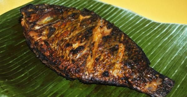 Aprenda a preparar tilápia assada na churrasqueira com esta excelente e fácil receita. Originária do Nilo, a tilápia é um peixe de água doce que se tornou comum em...