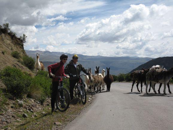 Homestay in Yanque, Colca, Peru | Doozze