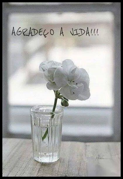Post  #FALASÉRIO!  : SEMPRE !