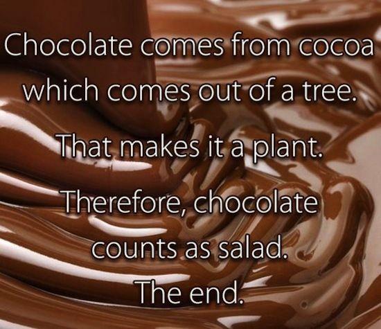 chocolate is salad, funny photos