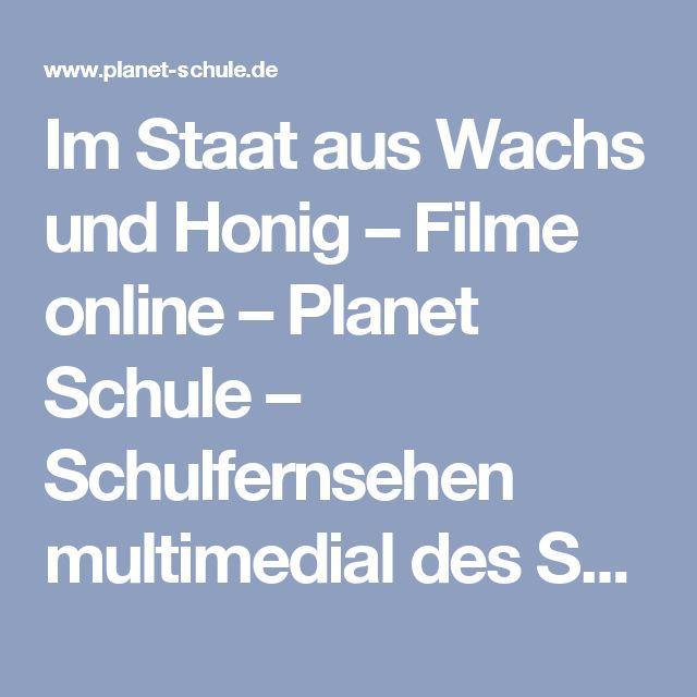 Im Staat aus Wachs und Honig – Filme online – Planet Schule – Schulfernsehen multimedial des SWR und des WDR