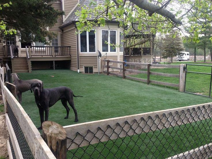 dog kennel under deck #dogkennelunderdeck   Outdoor dog ...