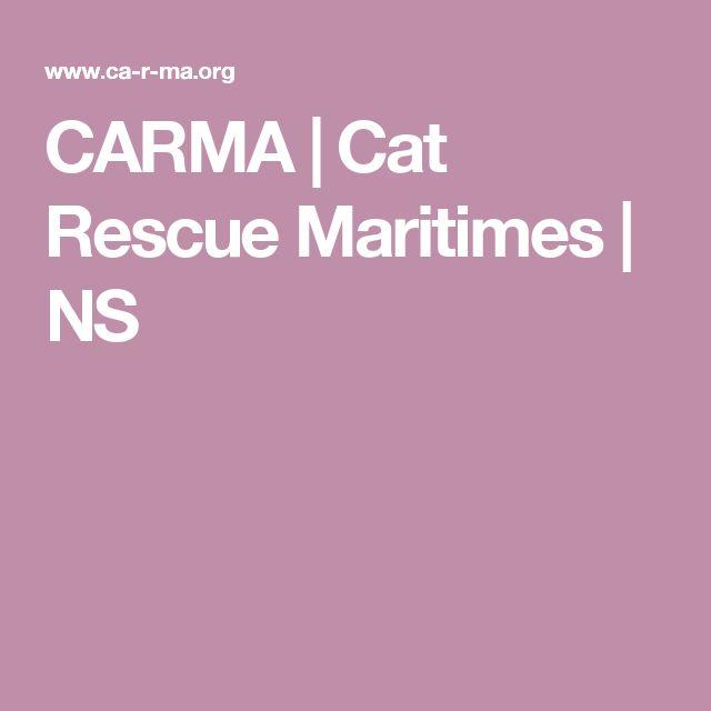 CARMA   Cat Rescue Maritimes   NS