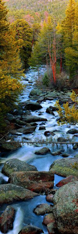 Alexander Vershinin - Where The Runes Still Speak #travel #travels #nature #vertical #landscape #light #colors #river #trees #wood