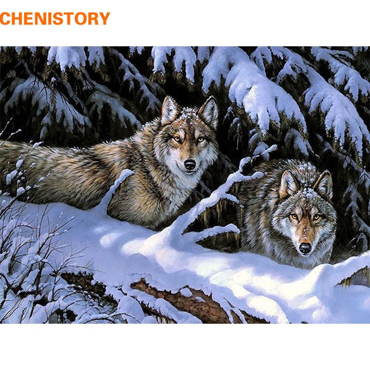 CHENISTORY Snow Wolf Animals DIY Painting By Numbers Kits Paint On Canvas Acrylic Coloring Paini By Numbers For Home Wall Decor #Affiliate