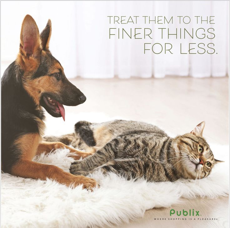 Publix Pet Sale Ad August 16 - September 12, 2017 - http://www.olcatalog.com/grocery/publix-sale.html