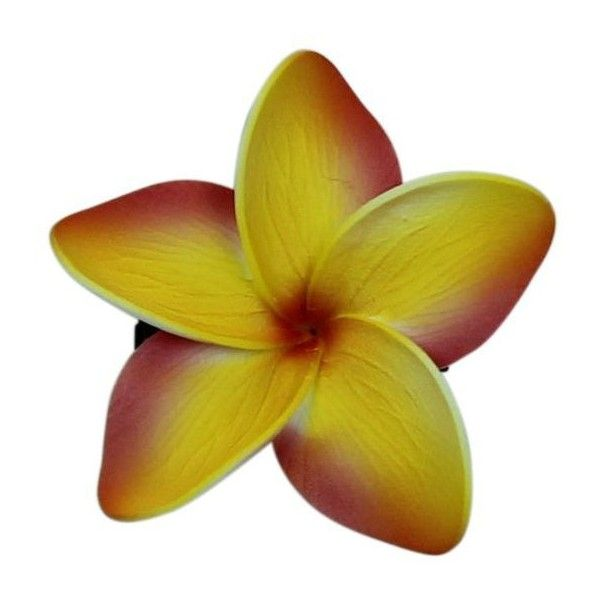 Hawaii Hair Clip Lei Party Luau Floral Dance Beach Photo Foam Plumeria... ❤ liked on Polyvore featuring accessories, hair accessories, red flower hair accessories, hawaiian flower hair accessories, floral hair accessories, red headband and headband hair accessories