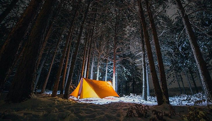 7 Tips For Living in the Woods: Are You Ready?
