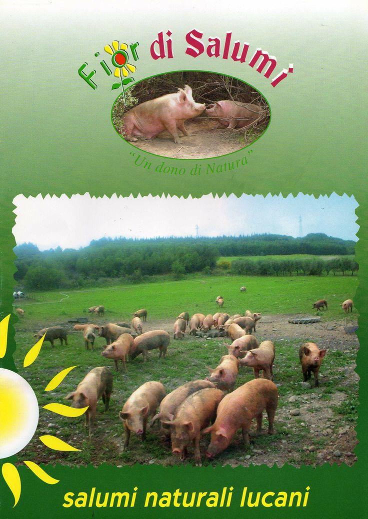 Sopra Il Logo della Fiordisalumi sotto la foto dei primi porci (anno 1999) inseriti in azienda e certificati biologici provenienti dall'istituto agrario di Rovigo.Da qui iniziò la storia della Fiordisalumi.